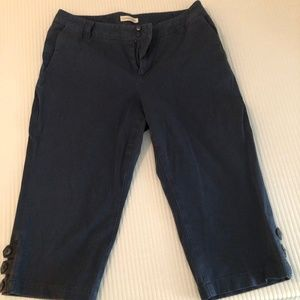 Coldwater Creek Capri Pants